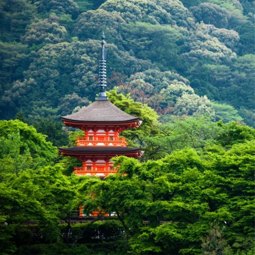 Twoja Japonia: Od Osaki po Himeji 18+